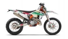 KTM 250 EXC TPI SIX DAYS 2021